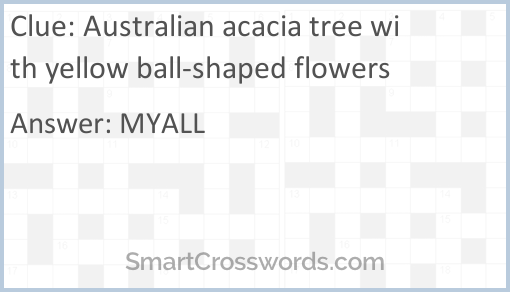 Australian Acacia Tree With Yellow Ball Shaped Flowers Crossword